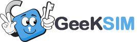 GeekSIM